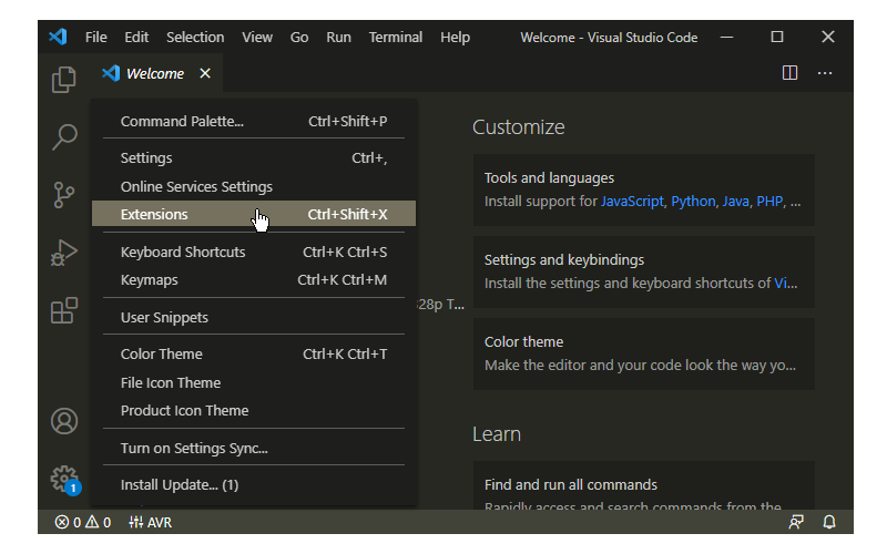 Install Extension in Visual Studio Code